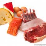 Nutrición básica: proteínas
