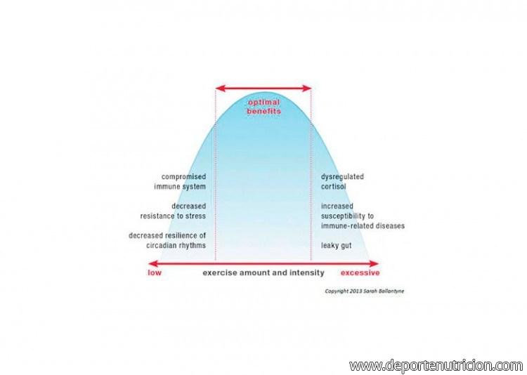 permeabilidad1